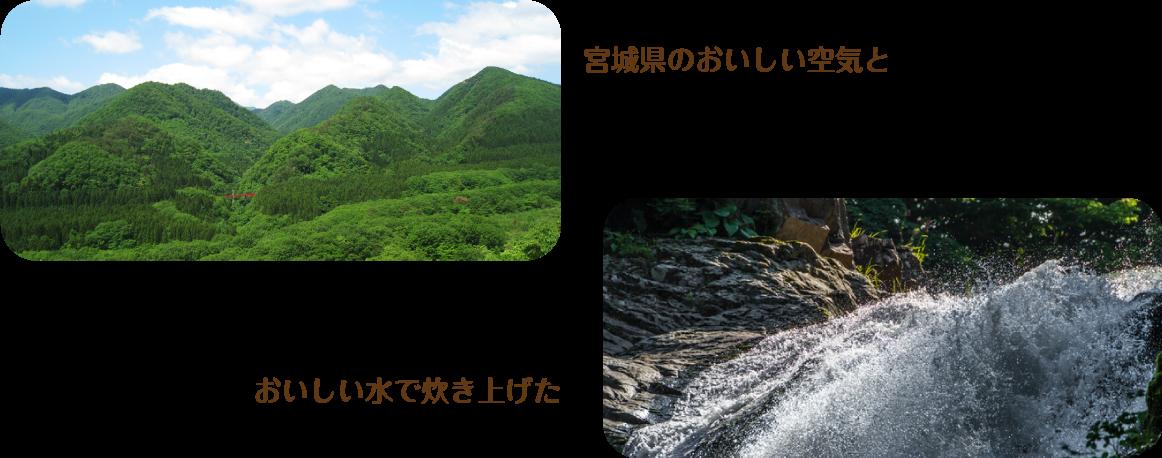 宮城県のおいしい空気と おいしい水で炊き上げた
